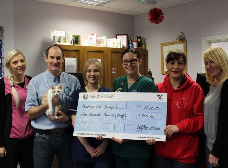 Walton Homes boosts Rugeley Cats Society's work with £500 donation image